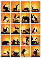 Collection of animals and birds silhouette