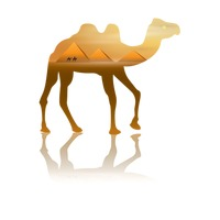 Double exposure of camel and desert