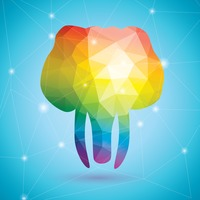 Elephant in rainbow colors