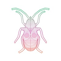 Intricate bug design