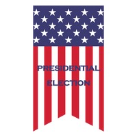 Us election flag pennant