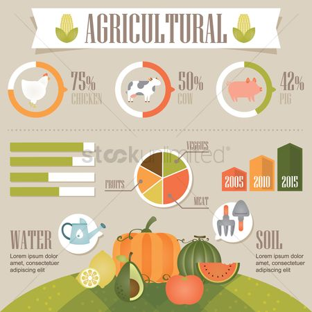 Infographic : Agricultural infographic