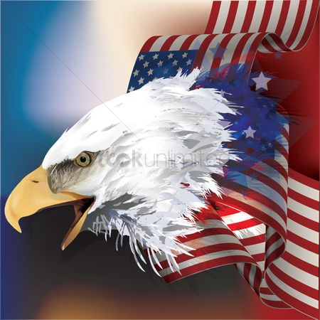 Birds : Bald eagle with flag design