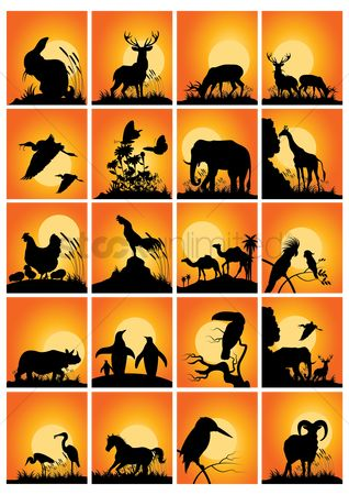 Animals Wildlife : Collection of animals and birds silhouette
