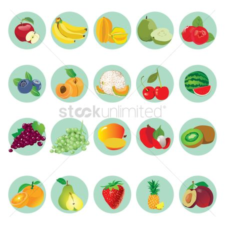 Vectors : Collection of fruit