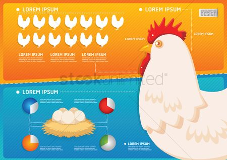 Birds : Farm and agriculture infographic