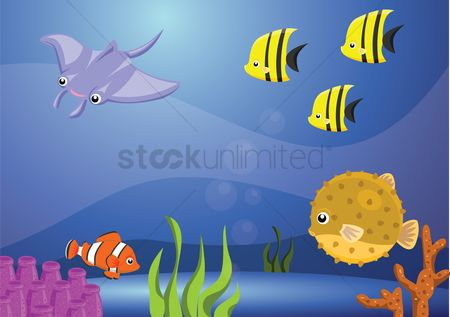 Water : Fishes under water