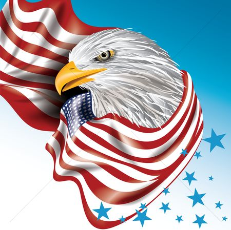 Birds : Usa eagle design