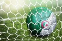 Algeria soccer ball in goal net