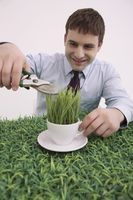 Businessman trimming grasses on cup