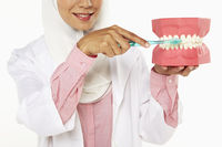Dentist demonstrating how to brush teeth