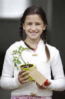Girl holding a tomato and a tomato plant