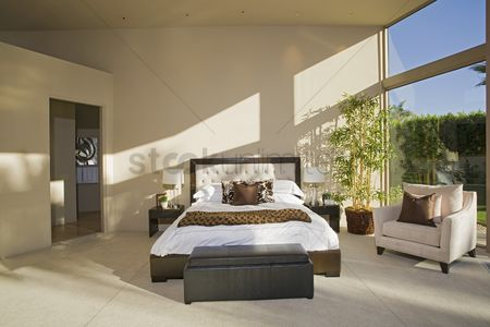 Interior : Sunlit palm springs bedroom