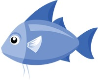 A fish on white background