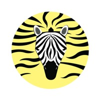 A zebra on striped background