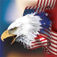 Bald eagle with flag design