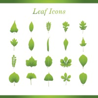 Collection of leaves icons