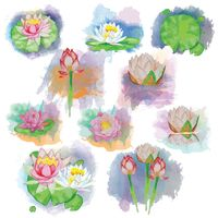 Collection of lotus flowers and leaves