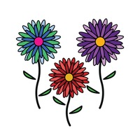 Popular : Colorful flowers on white background