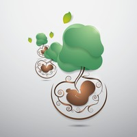 Popular : Ecology wallpaper