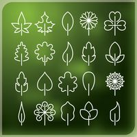 Leaf outline collection