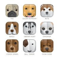 Popular : Set of dog icons