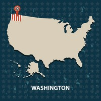 Washington state on the map of usa