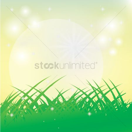 Grass background : Abstract background
