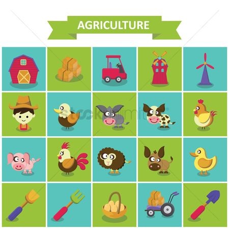 Duck : Agriculture collection