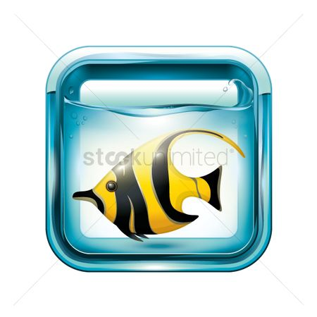 Marine life : Angel fish in an aquarium