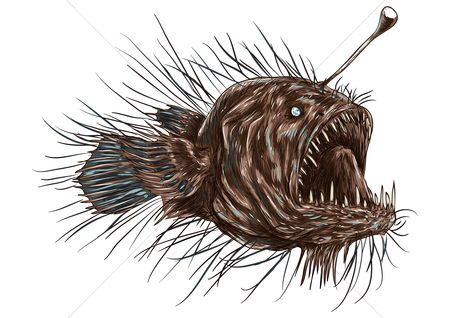 Huge : Anglerfish