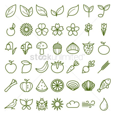 Watermelon : Assorted icon collection