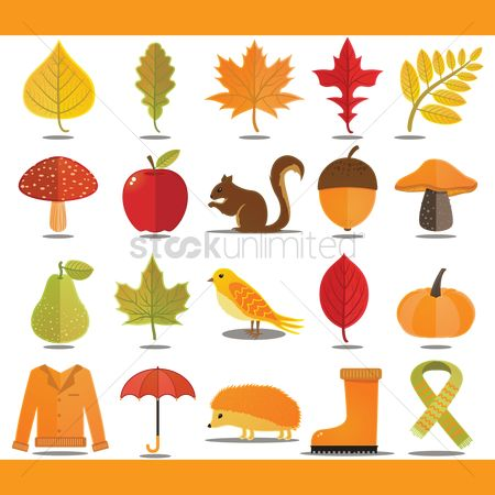 Red : Autumn themed vectors