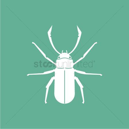 Free Hexapod Invertebrates Stock Vectors | StockUnlimited