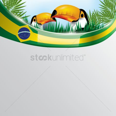 Toco toucan : Brazil flag with toco toucan