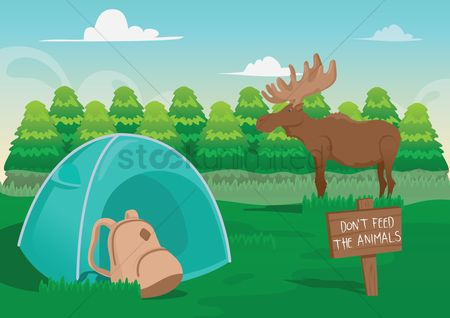 Tents : Camping