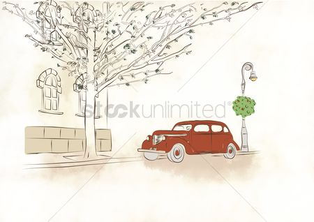 Transport : Car under tree