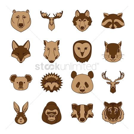 Smart : Collection of animals