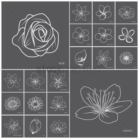 Hand drawn : Collection of flower icons