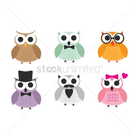 Clothings : Collection of owls
