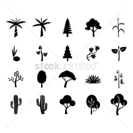 Cactus : Collection of tree icons