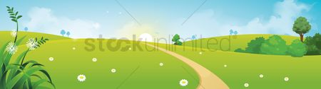 Grass : Countryside scenery banner