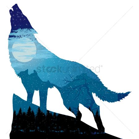 Double exposure : Double exposure of wolf and landscape