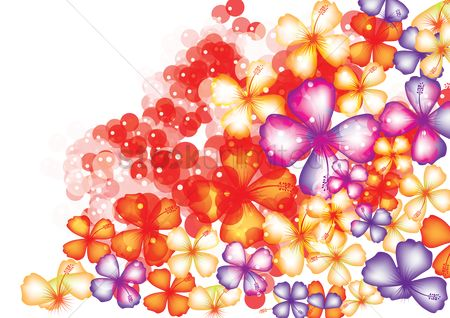 Graphic : Floral background