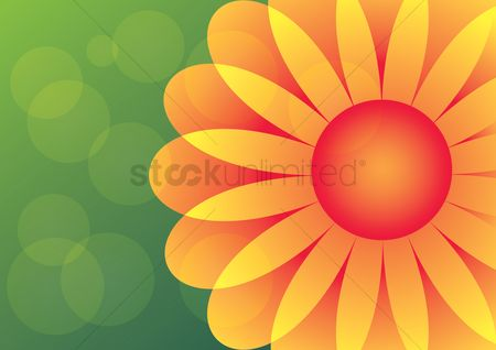 Cream : Flower on cream background
