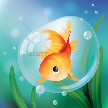 Marine life : Goldfish in a bubble