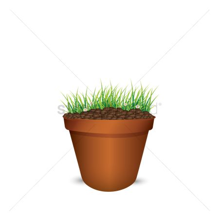 Flower pot : Grass in a pot