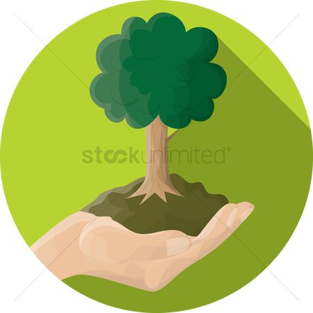 Shield : Hand holding a tree