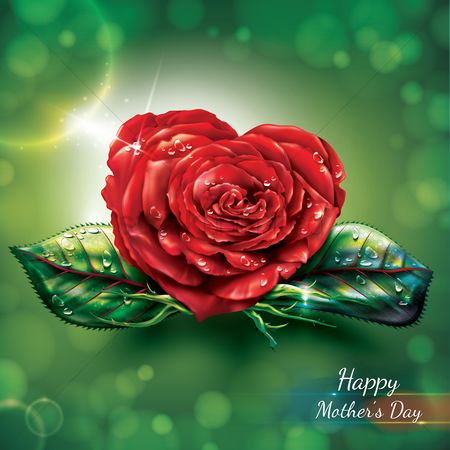 Mothers day : Happy mothers day card with rose