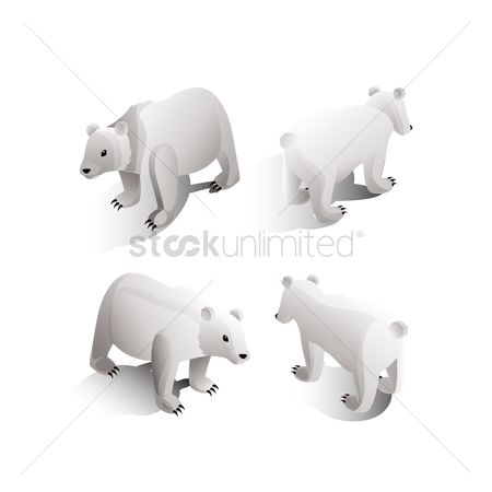 Posing : Isometric polar bears